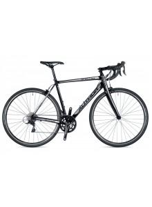 Aura 33 2019 48 černá/bílá/stříbrná Author silniční kolo