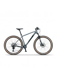 "Horský bicykel 29"" Apache Tuwan C1 metal grey, 17"""